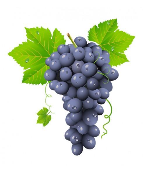 Grape