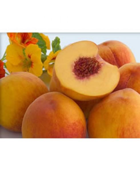 Wild Peach